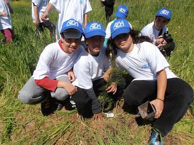 Χαϊδάρι Σήμερα Κάτοικοι και μαθητές μετατρέπουν σε πνεύμονα πρασίνου ένα γυμνό δημοτικό χώρο 8