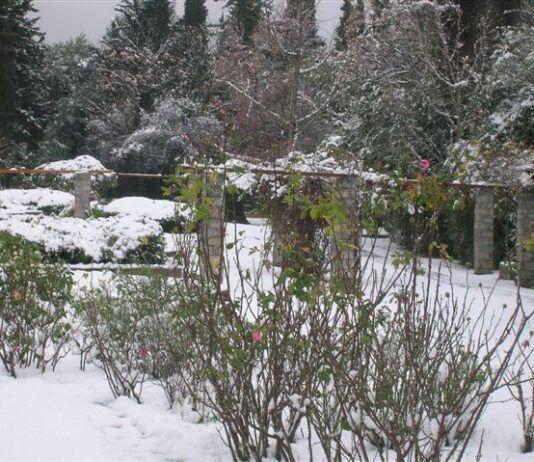 Χαϊδάρι Σήμερα Ο Διομήδειος Κήπος στα λευκά 5