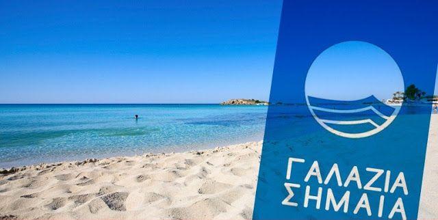 Χαϊδάρι Σήμερα Ποιες είναι οι 11 παραλίες της Αττικής με Γαλάζια Σημαία - Τι συμβαίνει στη δυτική Ατική