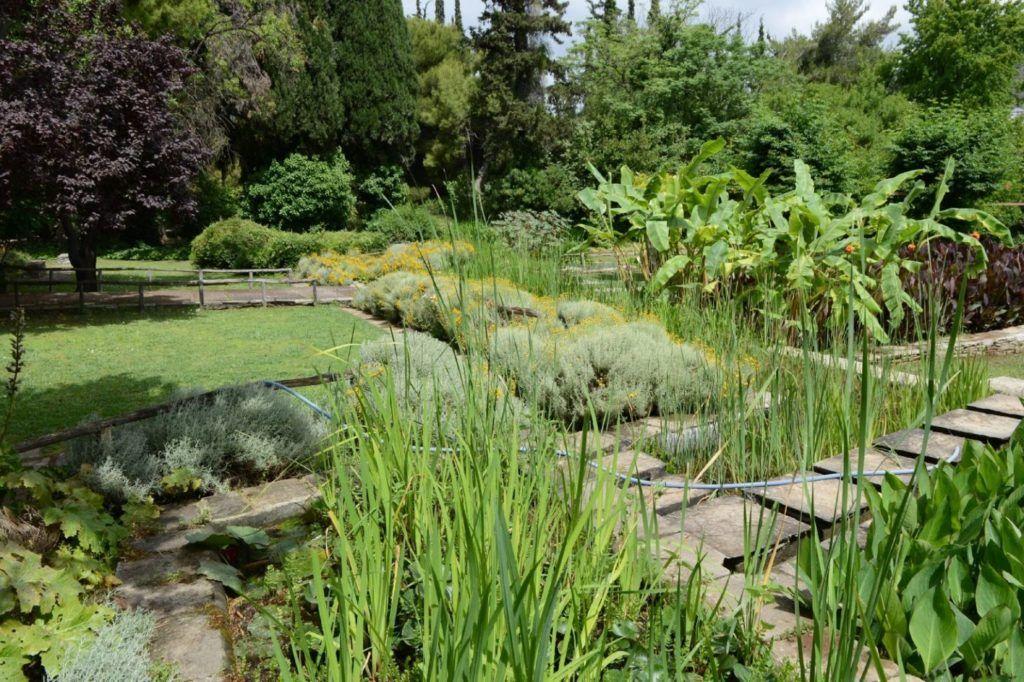 Χαϊδάρι Σήμερα Παγκόσμια Ημέρα Περιβάλλοντος στον Διομήδειο Κήπο - Πρόγραμμα 2