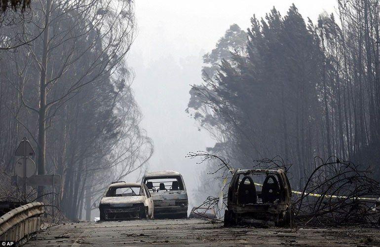 Χαϊδάρι Σήμερα Διεθνής μελέτη: Η Ελλάδα απειλείται με περισσότερες ακραίες δασικές πυρκαγιές
