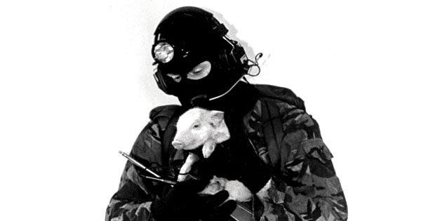 Χαϊδάρι Σήμερα Αναρχικοί απειλούν να σπάσουν κρεοπωλεία και pet shop