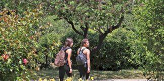Βοτανικός κήπος Χαϊδαρίου
