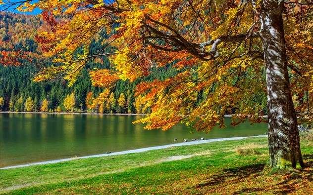 MG Travel: Βουτιά στα χρώματα του φθινοπώρου – Εκδρομές Οκτωβρίου